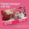 pic of paket sd bimbel online